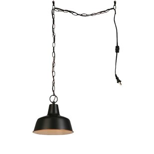 Plug In Swag Pendant Light | Wayfair