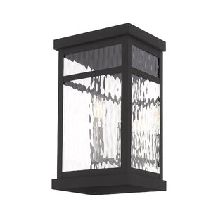 Mercury Row Demko 2-Light Outdoor Wall Lantern
