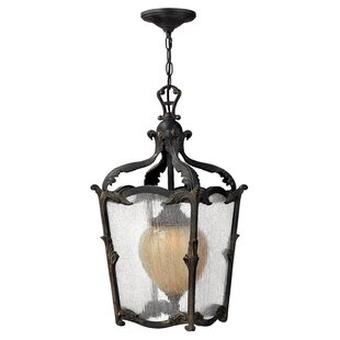 Melton 1-Light Outdoor Hanging Lantern