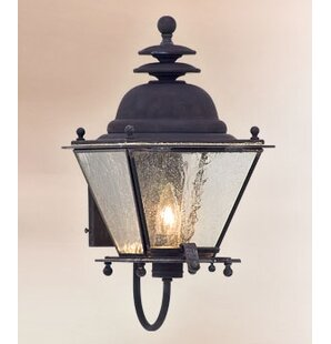 Theodore 3-Light Outdoor Sconce by Darby ..