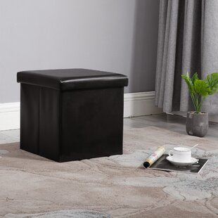 Bejou Tufted Storage Ottoman by Williston Forge