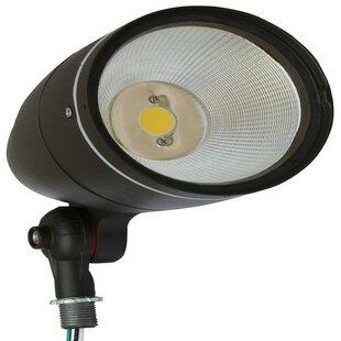 Bargain 1-Light LED Spot Light By Morris Products