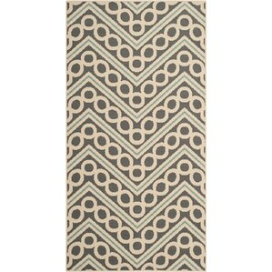 Hampton Dark Grey/Ivory Chevron Outdoor Area Rug