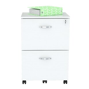 Latitude Run Boutwell 2 Drawer Mobile Vertical Filing Cabinet