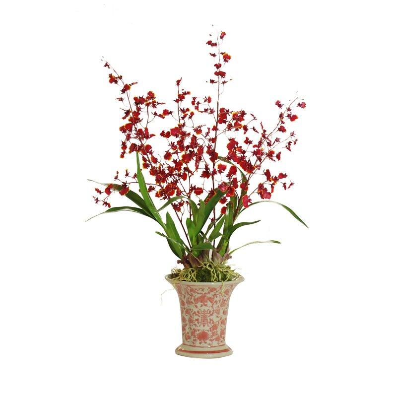 floral home decor orchid floral design wayfair.htm jane seymour botanicals dancing oncidium orchid floral arrangement  jane seymour botanicals dancing