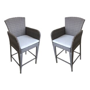 Patio Dining Chair with Cushion (Set of 2)