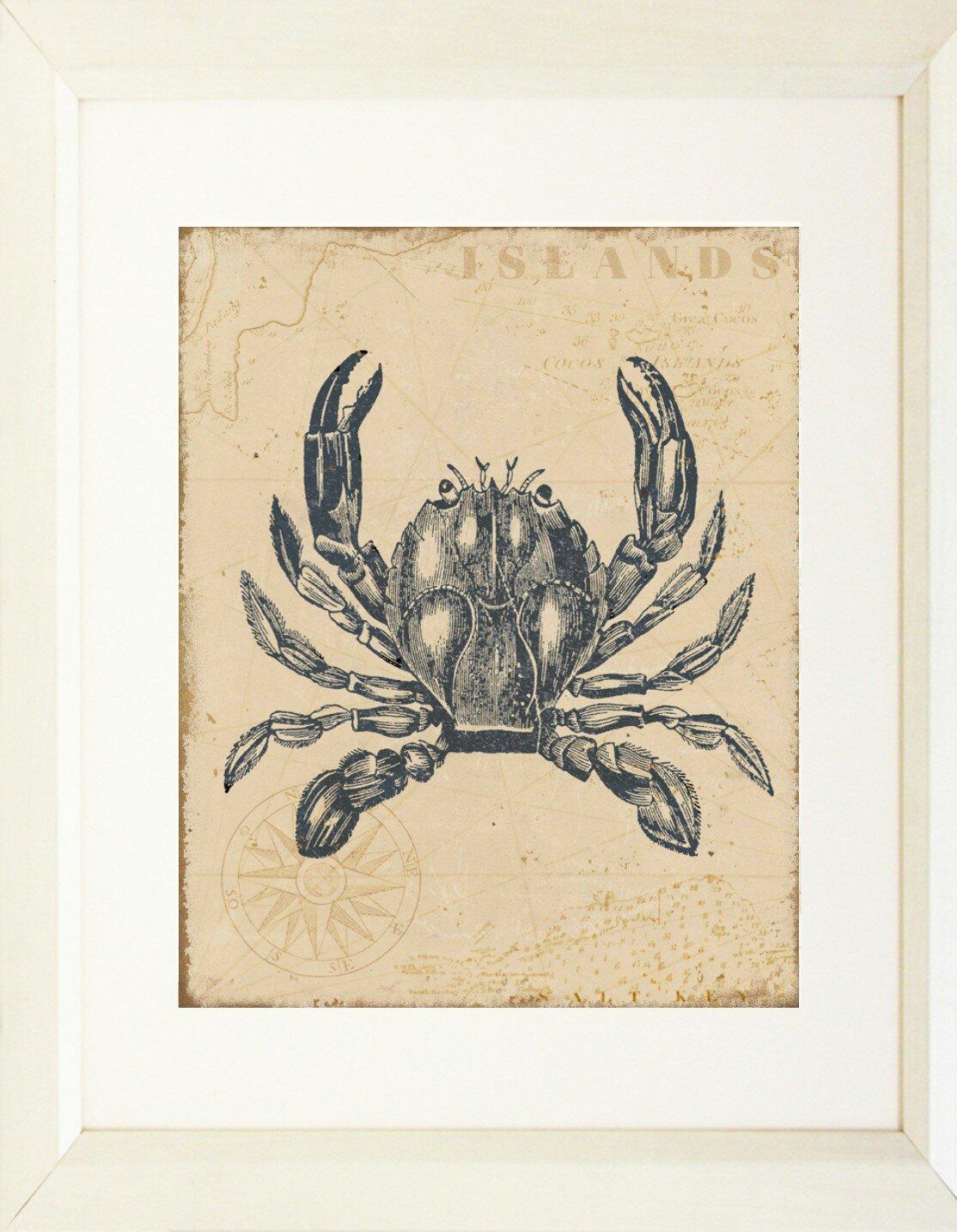 Buy Art For Less Coastal Map Crab Framed Graphic Art Print Wayfair