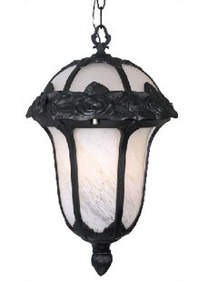 Rose Garden 1-Light Outdoor Pendant