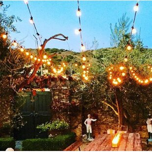 Inexpensive 24-Light Globe String Lights By Aspen Brands
