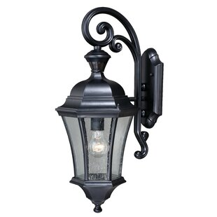Carnanreagh Dualux® 1-Light Outdoor Wall Lantern