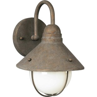 Manfredi 1-Light Outdoor Barn Light