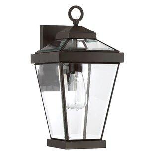 Lauren 1-Light Outdoor Wall Lantern