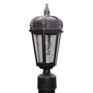 Flannigan 1-Light Lantern Head by Charlton Home