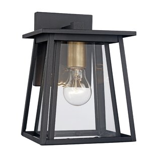 Noa Outdoor Wall Lantern by Andover Mills Best