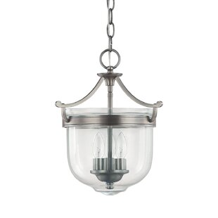 Birch Lane™ Harrington Urn Pendant