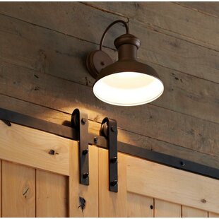 Laurel Foundry Modern Farmhouse Vallie LED Outdoor Barn Light