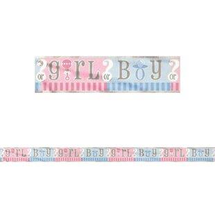 Gender Reveal Disposable Foil Banner Decoration