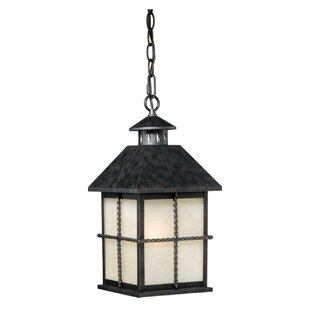 Charlton Home Fearon 1-Light Outdoor Hanging Lantern