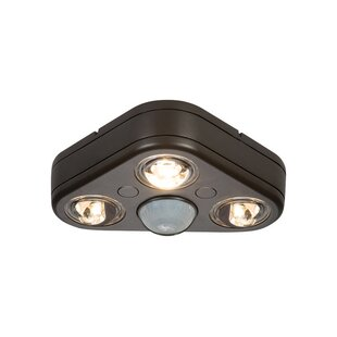 Cooper Lighting LLC All-Pro Revolve 32-Wa..