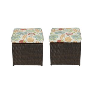 Mcmanis Outdoor Ottoman with Cushion (Set of 2)