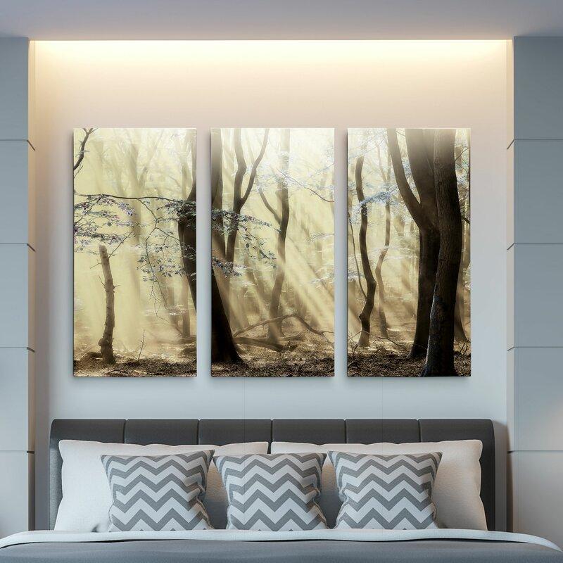 Charlton Home Forest Dimensions 3 Piece Photograph Print Set On Canvas Wayfair