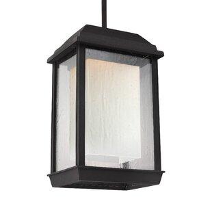 Brayden Studio Schill 1-Light Outdoor Hanging Lantern