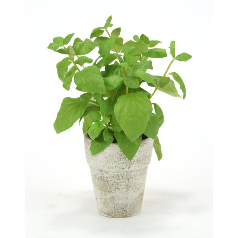 Distinctive Designs Silk Basil Spray Floor Foliage Plant In Pot