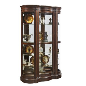 Gwinnett Lighted Wall Mounted Curio Cabinet by Astoria Grand