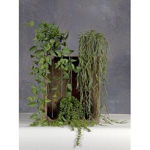 3 Artificial Plant In Pot Set Image