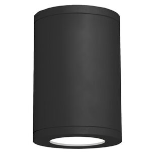 Orren Ellis Robyn 1-Light Flush mount