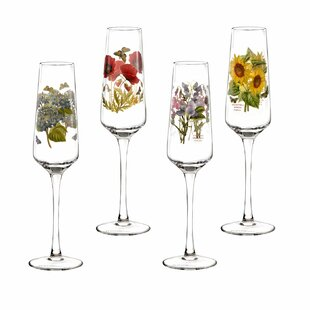 4 Piece 230ml Champagne Flute Set by Portmeirion
