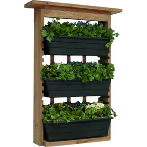 Wall Hanging Planter wall planters & vertical gardens you'll love
