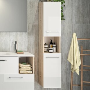 Reginald 30 X 150cm Wall Mounted Cabinet By Mercury Row
