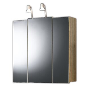 68 X 71cm Surface Mount Mirror Cabinet By Belfry Bathroom