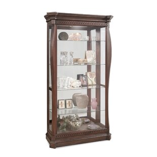 Darby Home Co Deems Lighted Curio Cabinet