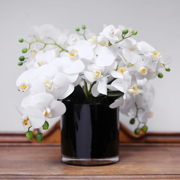 Black Vase With White Flowers Wayfair