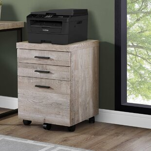 Union Rustic Schroeder 3-Drawer Lateral F..