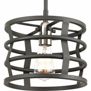 Williston Forge Pattie 1-Light Drum Pendant