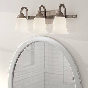 Shopping for Birmingham 3-Light Vanity Light By Charlton Home