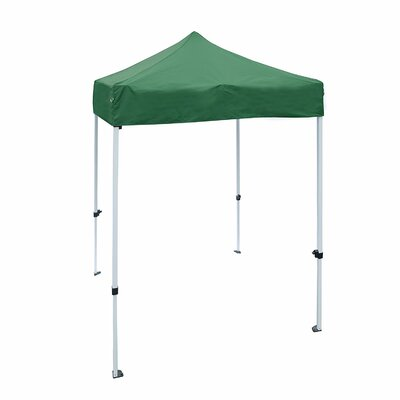 5 Ft. W x 5 Ft. D Steel Pop-Up Canopy ALEKO Color: Green
