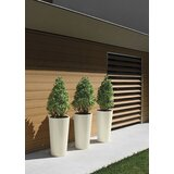 Pot Winston Porter Planters You Ll Love In 2021 Wayfair
