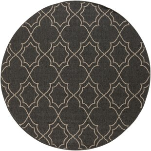Amato Power Loomed Black/Camel Indoor/Outdoor Area Rug by Alcott Hill