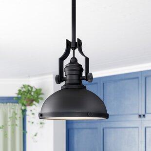 Roa 1-Light Dome Pendant b..