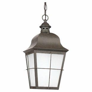 Loon Peak Chancellroy 1-Light Outdoor Hanging Lantern