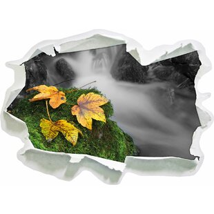 Leaves On Moss Covered Stone At Waldbach Wall Sticker By East Urban Home