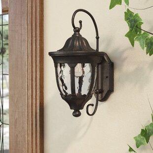 Amy Outdoor Wall Lantern by Fleur De Lis Living