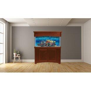 55 Gallon Aquarium Stand Wayfair