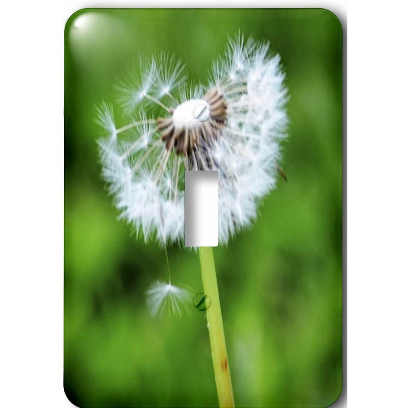 3drose Wishing Spring Flower Dandelion 1 Gang Toggle Light Switch Wall Plate Wayfair