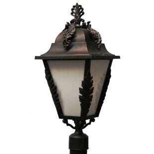 Alcott Hill Petrey 3-Light Lantern Head