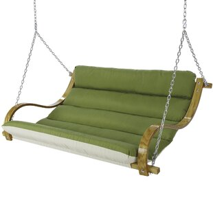 Latitude Run Lafave Deluxe Cushioned Double Porch Swing